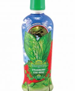Strawberry Kiwi-Mins 32oz